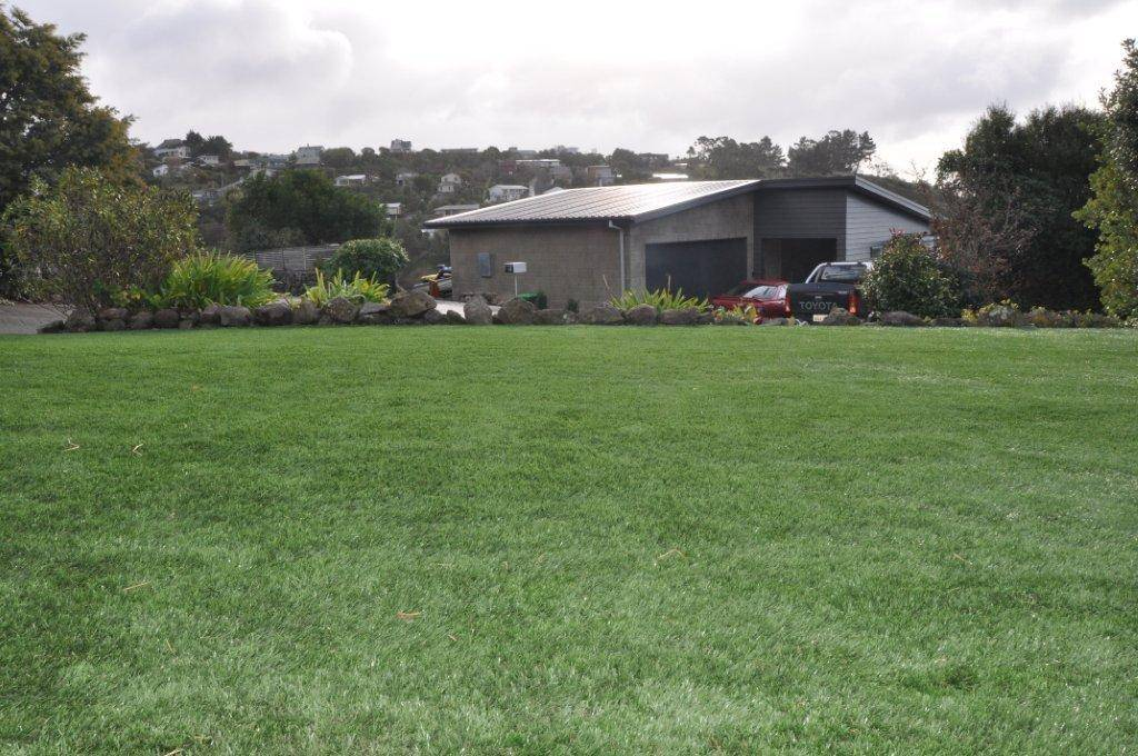 Manufacturers recommend synthetic grass lawn