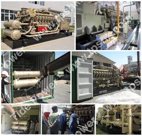 JDEC Gas Generator Set Gas Genset