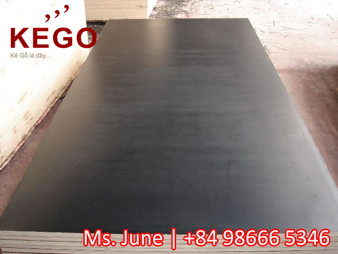 Best price for film face plywood with hardwood core veneer plywood