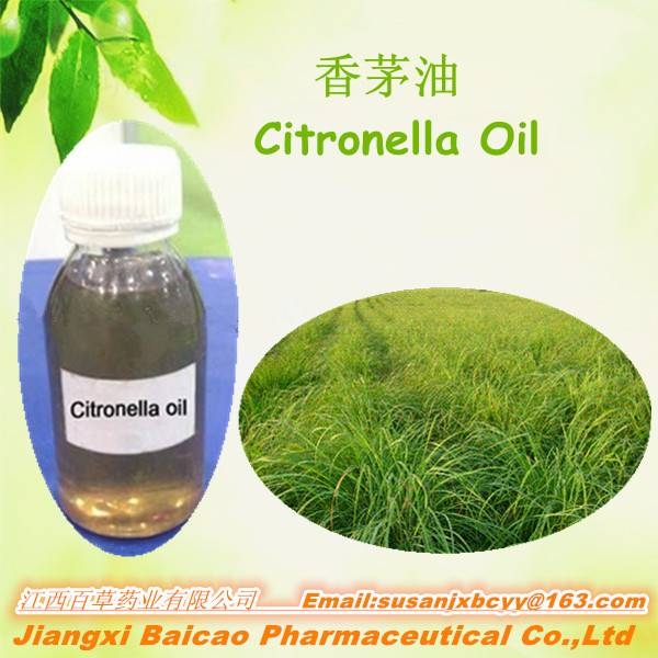 Citronella Oil Hot-sell manufactory