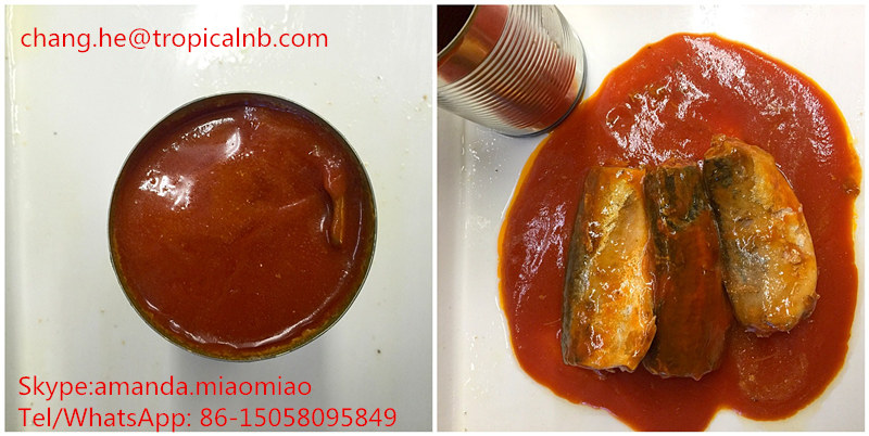 24X425grs Canned mackerel in tomato sauce