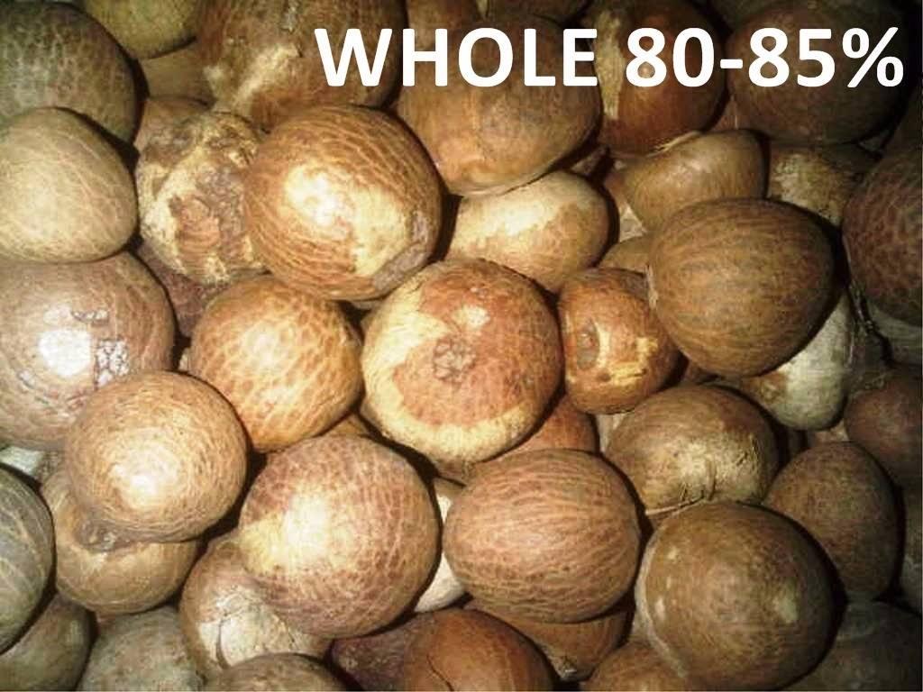Betel nuts split whole Indonesian origin