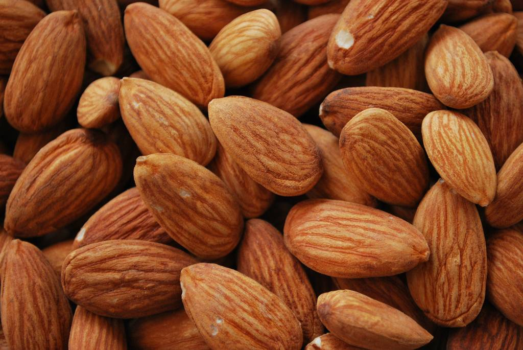 Raw bitter almond nuts for sale
