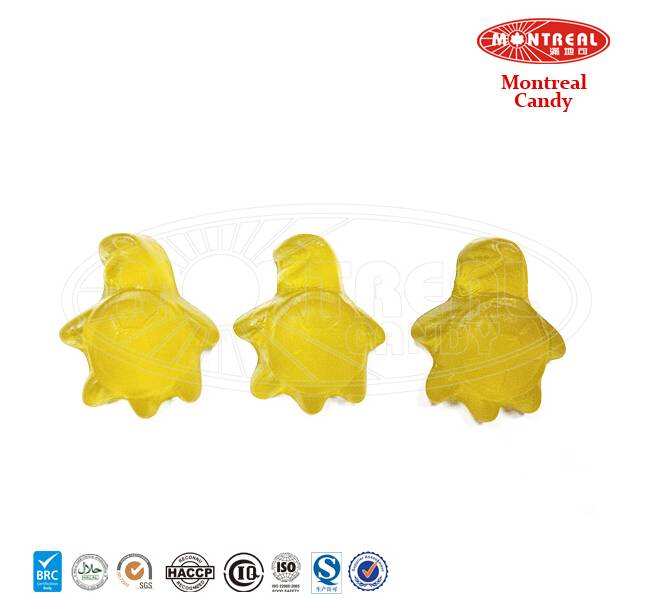 Toy tortoise shape animals with candy