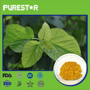 Mulberry leaf Extract,Flavonoids