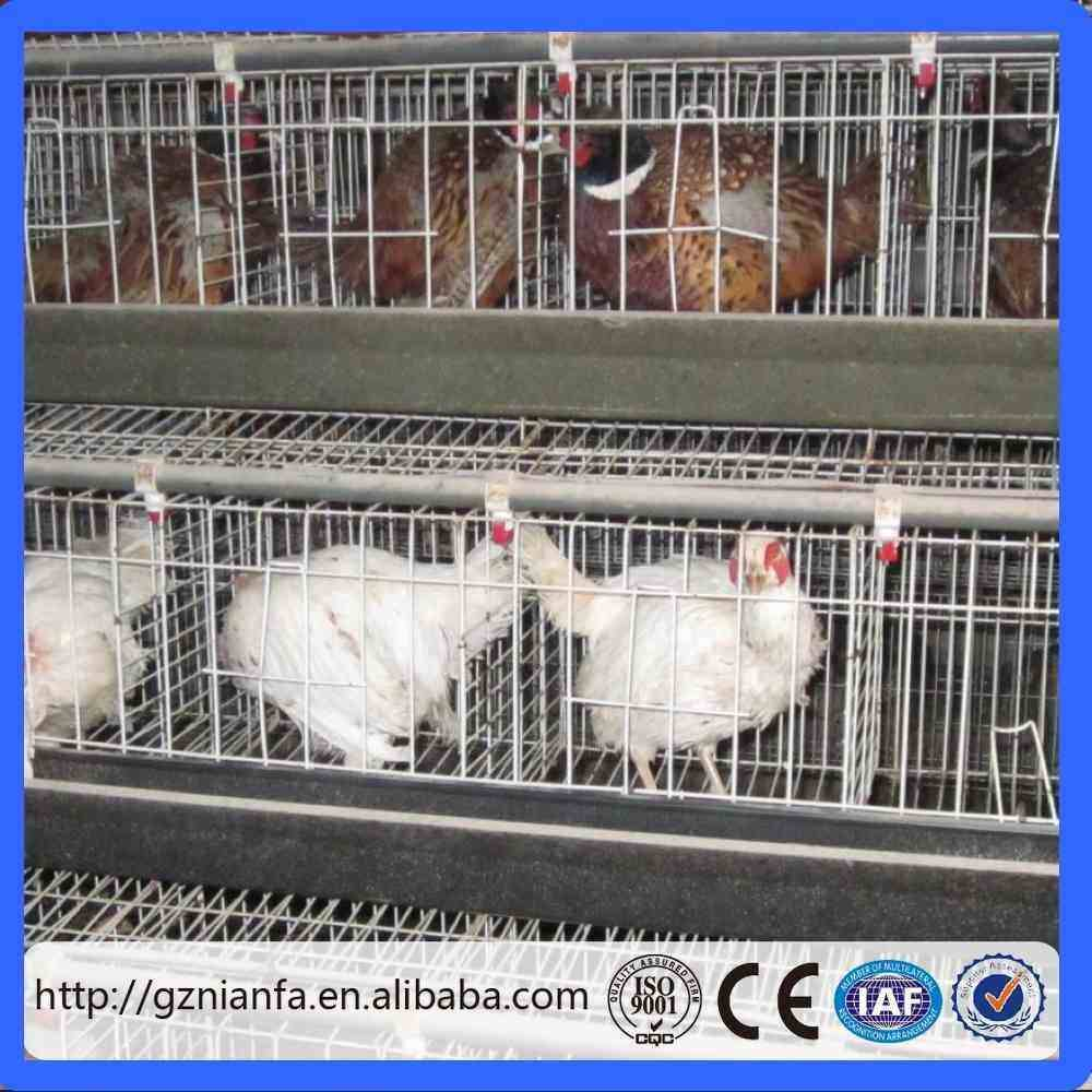 Layer chicken cage/ 4 tier A type with feeding system layer chicken cage(Guangzhou Factory)