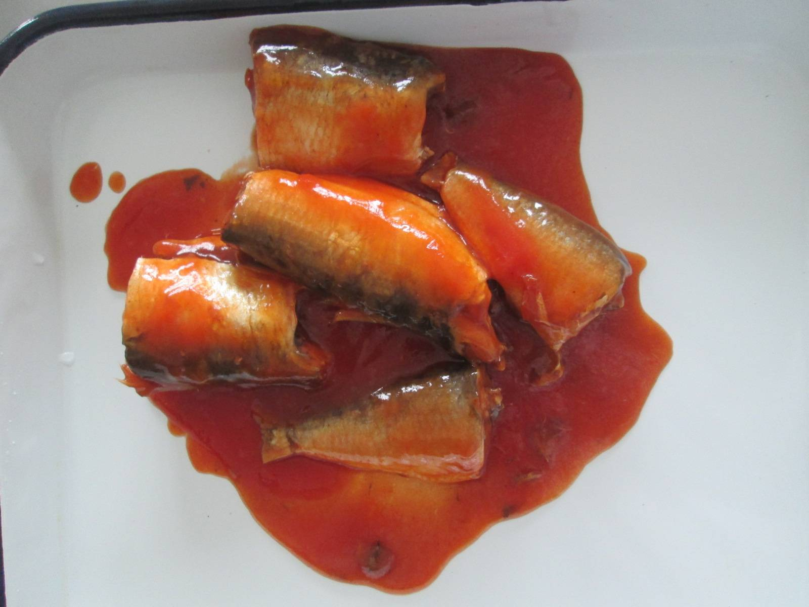 425g/240g Best canned sardines fish in tomato sauce,Indonesia seafood can.high quality low price