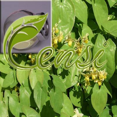 Icariin (Epimedium Extract) (CAS No. 489-32-7)