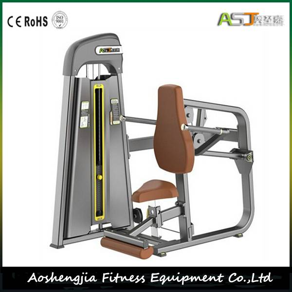 Commercial Fitness Equipment/Gym Equipment/S811 Seated Dip