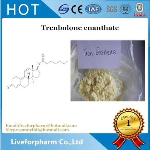 Trenbolone enanthate high purity Trenbolone enanthate powder for weight loss CAS 10161-34-9