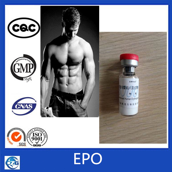 Injection 3000iu/Vial Epo Human Growth Steroids Powder CAS 17256886-58-2