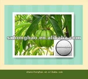 70%-80% Hydroxy citric acid(HCA) Garcinia Cambogia Extract
