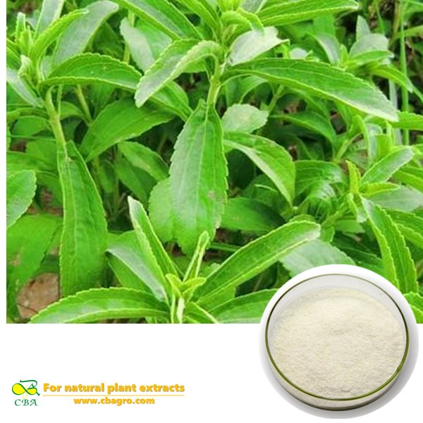 Stevia Extract sugar High Purity Natural Herbal Extract Stevia Sugar Rebaudiana Stevioside organic s