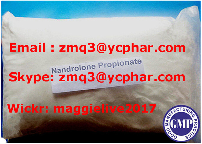 Top Quality Pharmaceutical Raw Material Nandrolone Propionate for Muscle Building