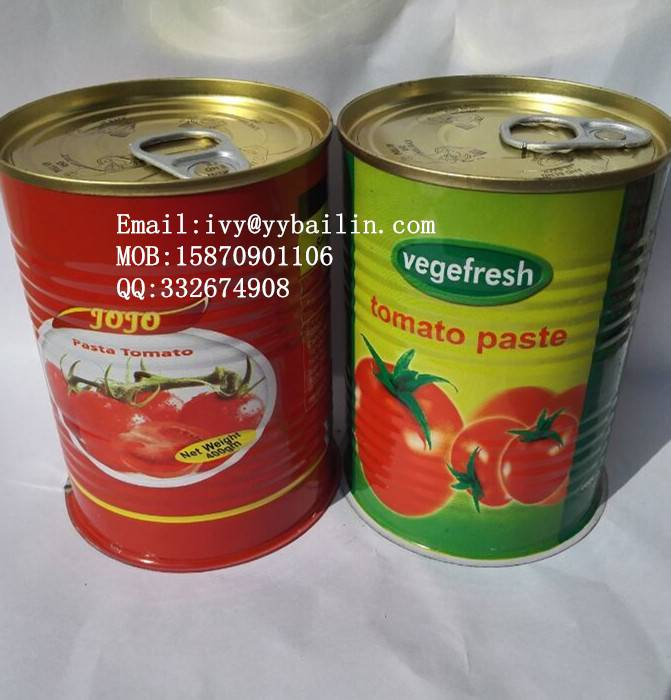 425g*24tins canned tomato paste, factory normal open/easy open tin packing
