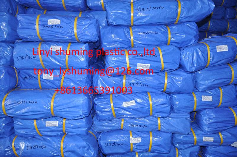 Heavy duty Blue/blue PE tarpaulin,Coated tarpaulin cover,100% waterproof&high tear-resistance