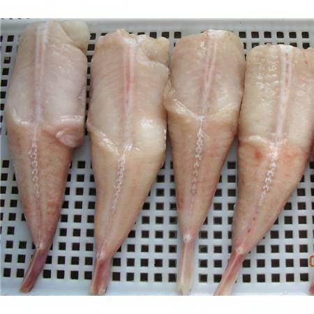 frozen monkfish tail