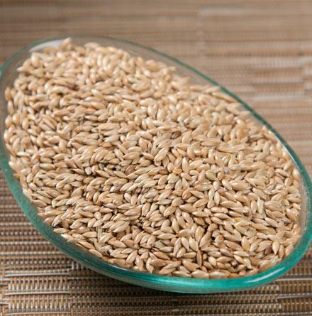 Durum Wheat, Spelt Grain, Barley, Malt, Feed Wheat, Food Grade Wheat