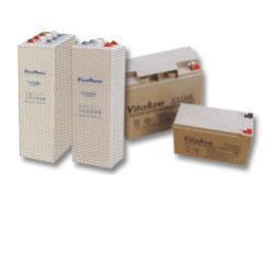 Vitalize Battery