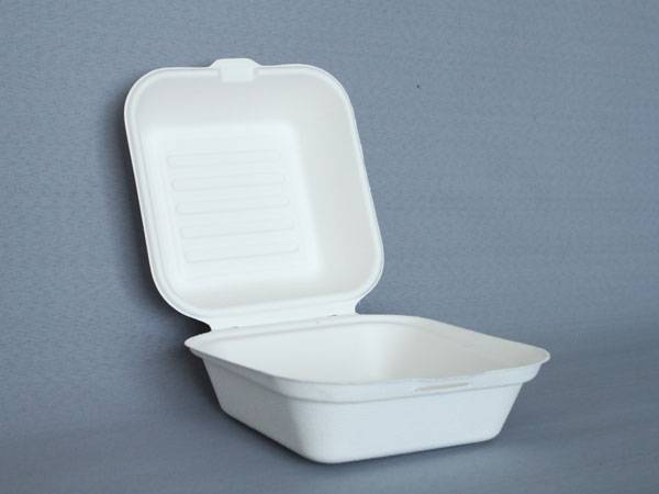 Sugar cane bio-degradable paper pulp bowls, dishes