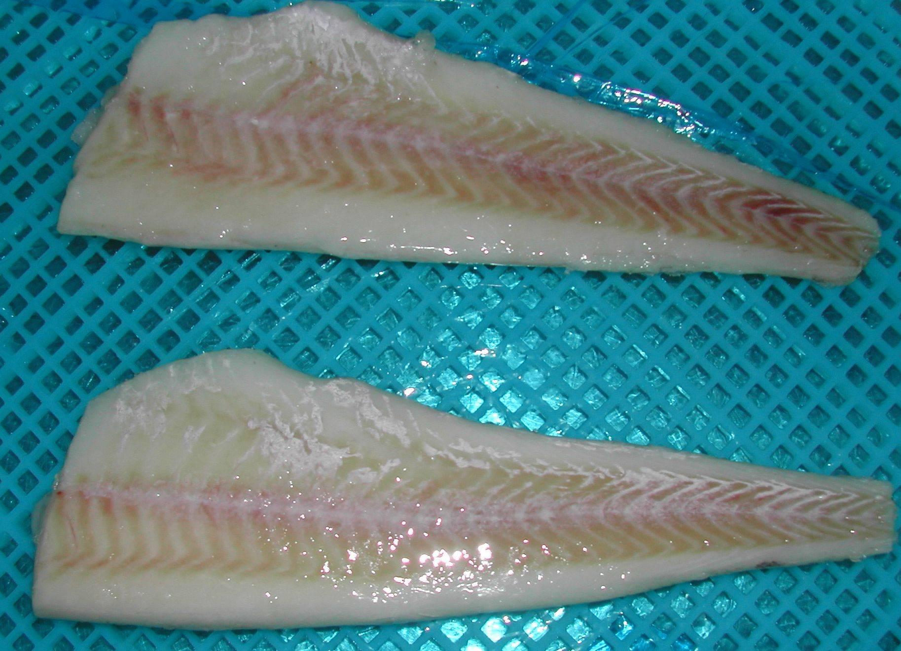 Atlantic Cod Fillets