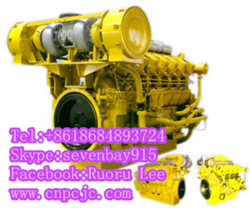 A12V190ZL Series 3000 diesel engines (600~1200KW)
