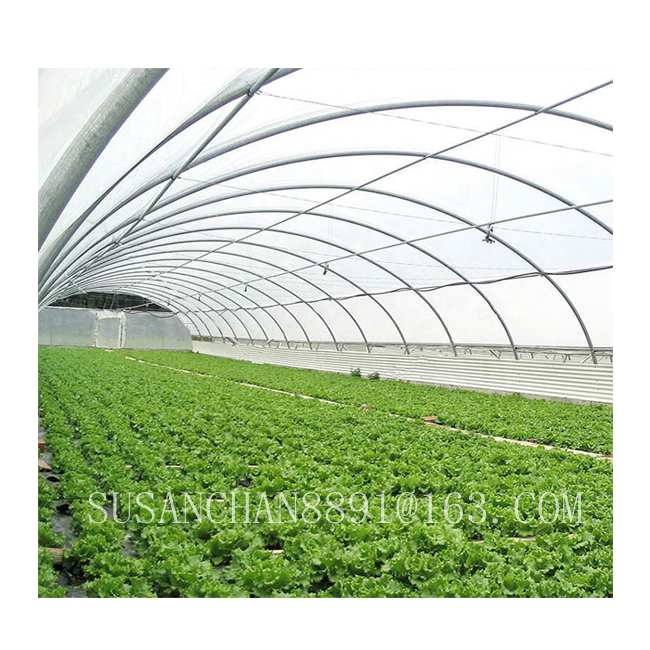 Single / multi-span agricultural greenhouses with PE film or PC board