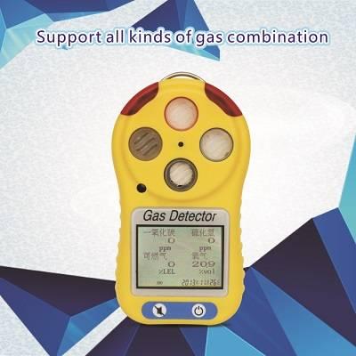 portable compound gas alarming detector