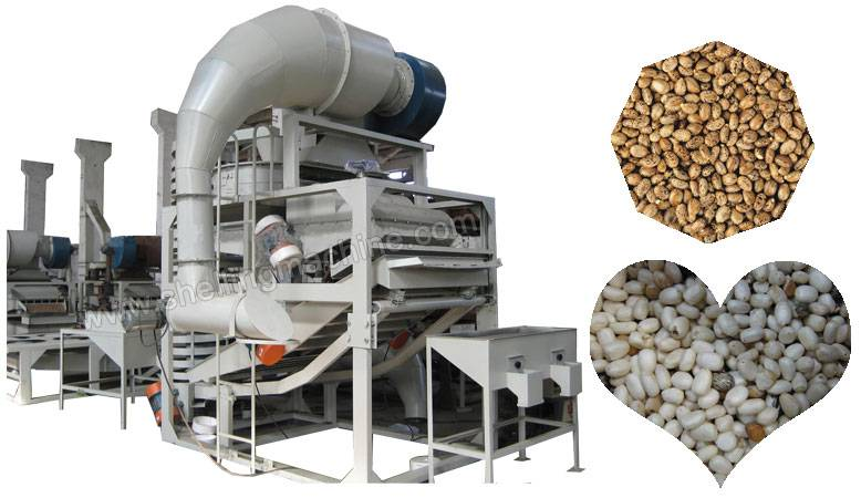 300 kg/h Castor Seed Shelling Machine