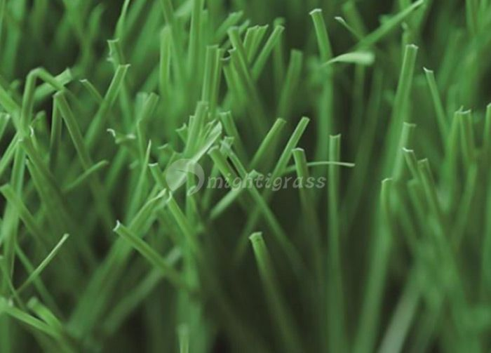Commercial Artificial Grass, MT-Venus