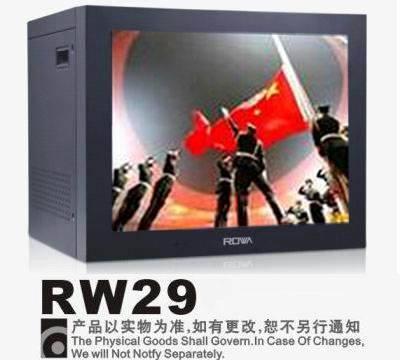CCTV Surveillance Monitor RW29