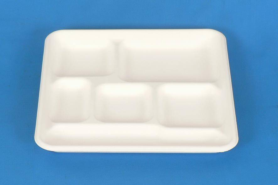 6 Compartments Square Disposable Food Tray