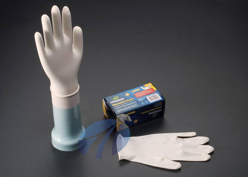 latex exam gloves in Malaysia