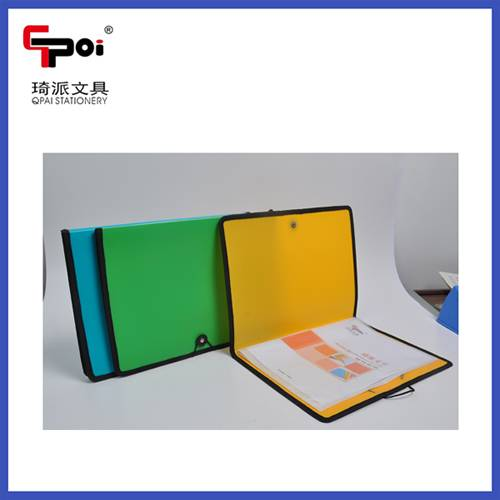 High Quality Cheap Opaque PP Stationery A4 Customized With Elastic Sewing Edge File Folders