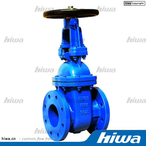 BS Rising stem solid wedge gate valve