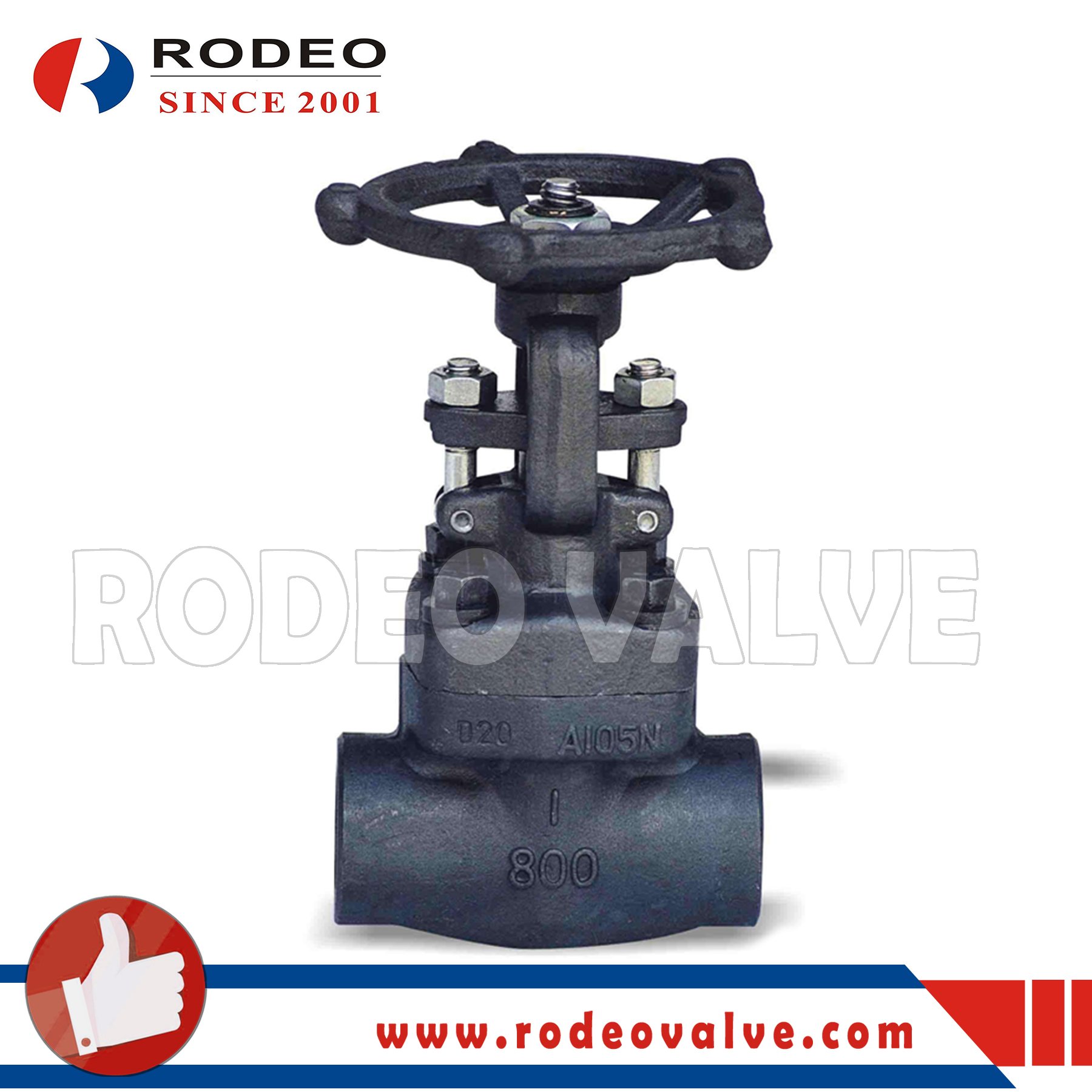 ASME Flanged forged steel globe valve