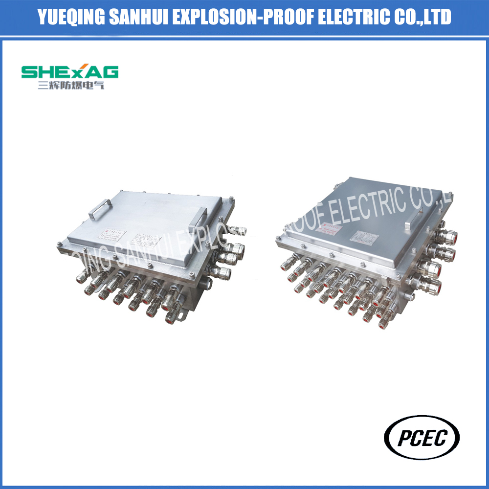 Stainless Steel Flame-Proof Explosion-Proof Junction Box (d II B/DIP)