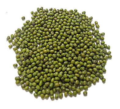 Size 2.5mm-5.0mm Green Mung Bean 2016 year