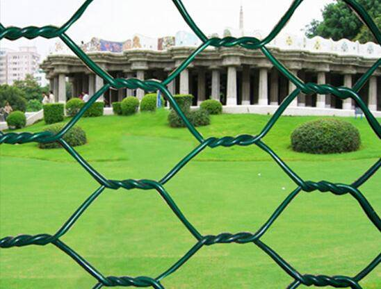 Hexagonal wire mesh chicken poultry farms fence chicken wire netting protection fence