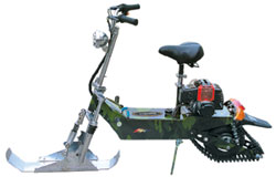 Electric and Gas Powered Scooter