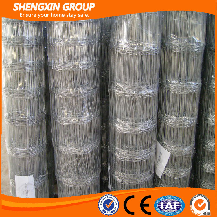 galvanized field fencing