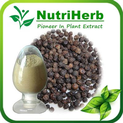 Natural Black Pepper Extract Powder 95% Piperine