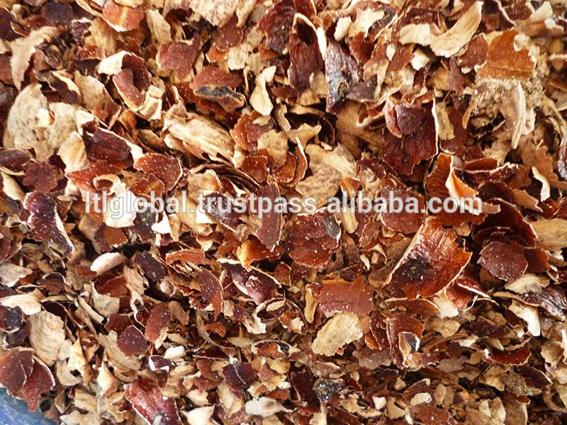 BEST PRICE FOR CASHEW NUT SHELL FROM VIETNAM