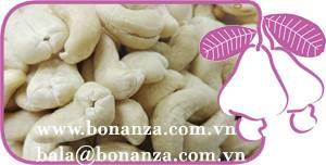 cashew WW320