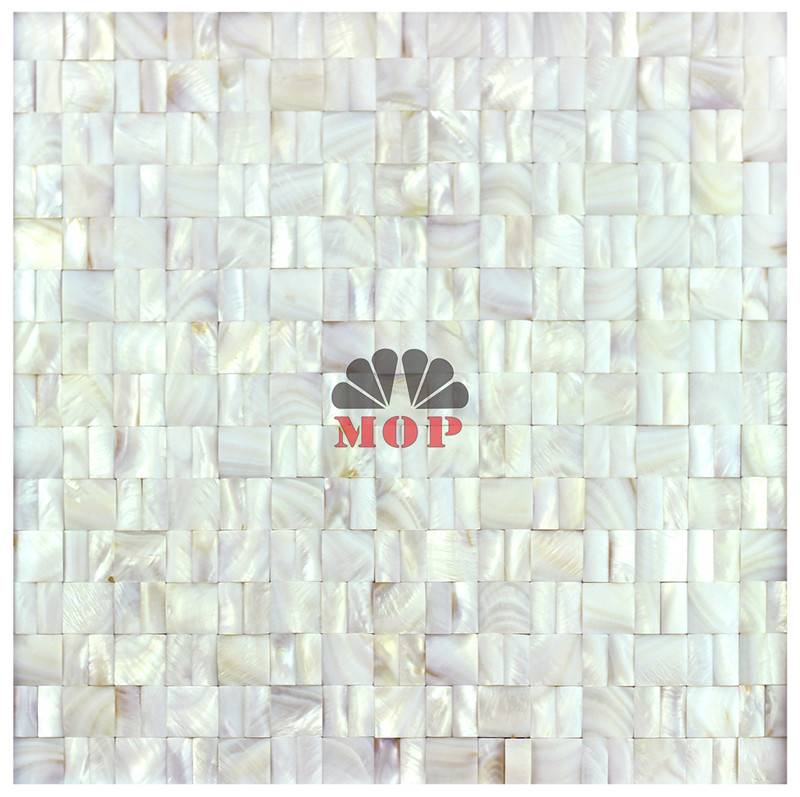 mother of pearl mosaic tile Corridor