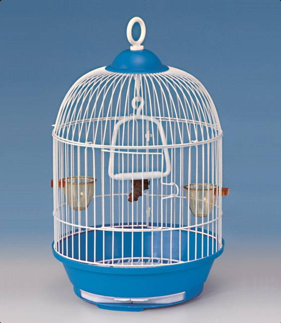 Luxury Parrot Cage Bird Cage 23A