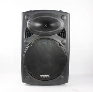 Professional Active outdoor Stage Speaker