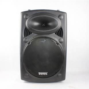 Professional Active outdoor Stage Speaker