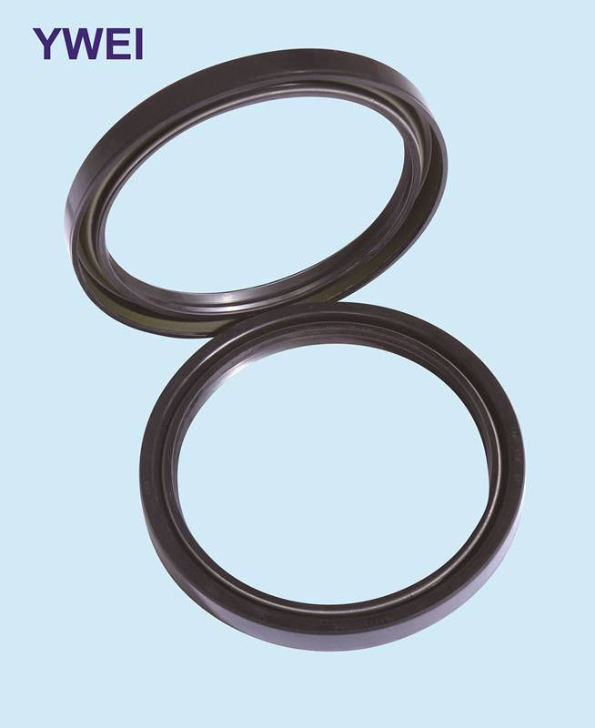 FKM type hign pressure skeleton oil seal for excavator made in China