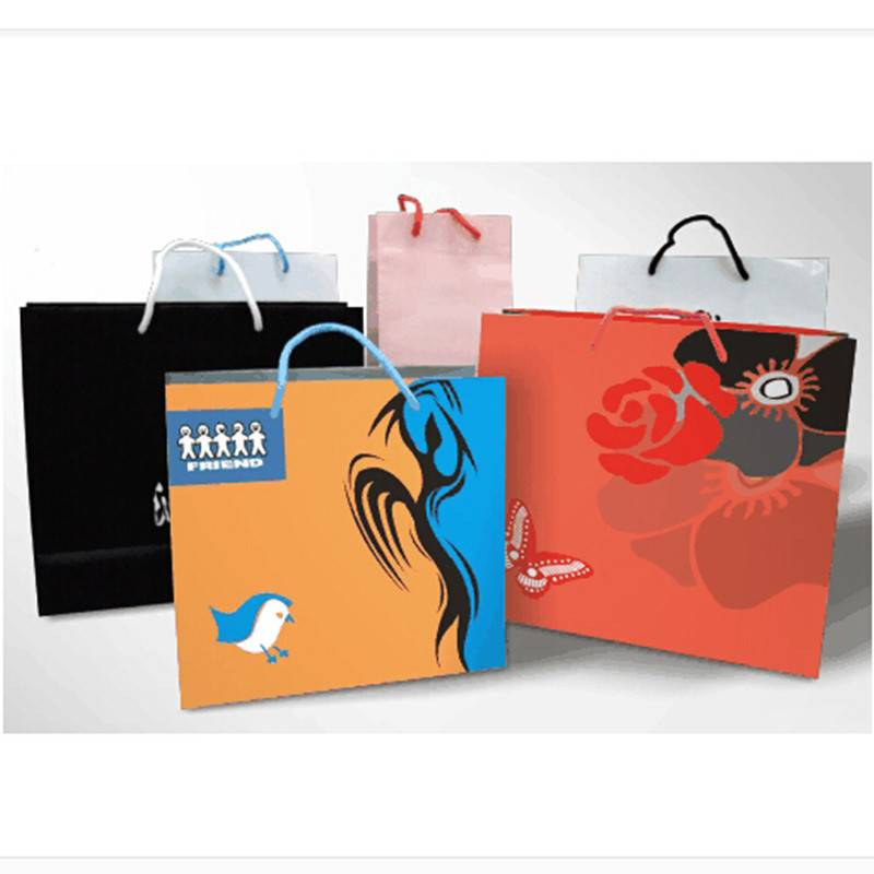 Custom 250gms lamination gift paper bag